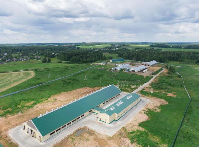 Молочная ферма на 512 голов беспривязного содержания с доильно-молочным блоком в д.Цепели Орловского района Кировской области